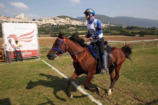 Entrenadores de caballos